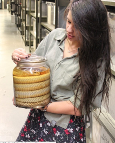 Behind the scenes tour event of the Department of Herpetology